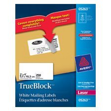 """TrueBlock™ White Laser Shipping Labels Package of 25 sheets 4 x 2"""" (250)"""