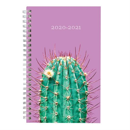 Arizona Weekly  /  Monthly Planner (2020-2021)