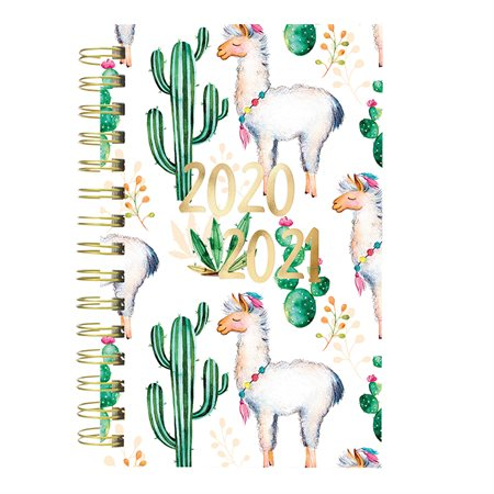 Cactus daily  /  weekly planner (2020-2021)
