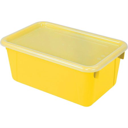 Small Cubby Bin with Cover