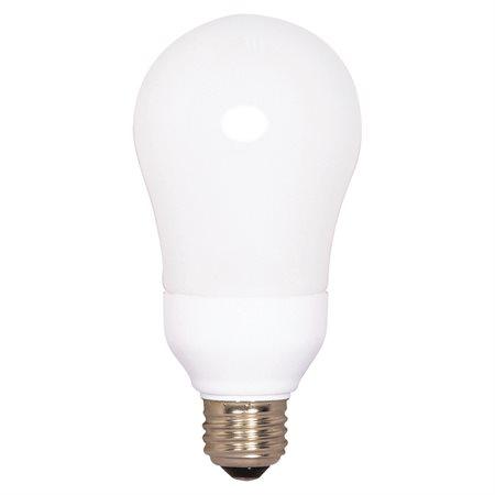 Ampoule A19 CFL