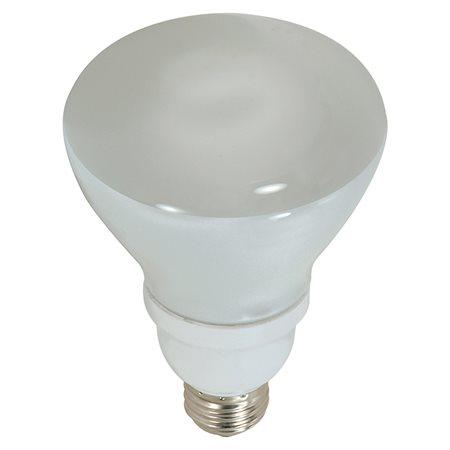 Ampoule CFL R30
