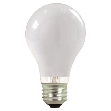 Ampoule halogène A22