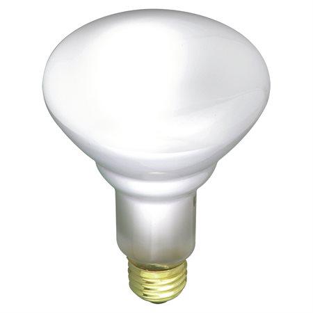 Ampoule BR30 à incandescence