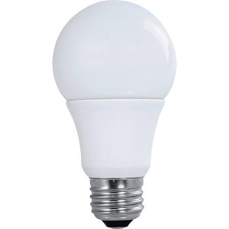 Ampoules DEL