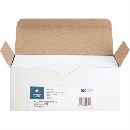 Secutiry Peel-To-Seal Envelope