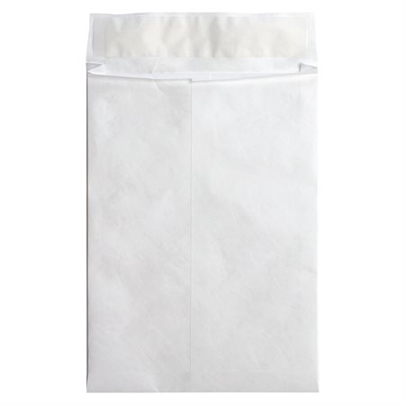 Tyvek® Expansion Envelope