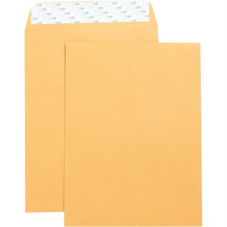 Self sealing Catalogue Envelope