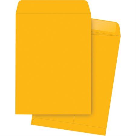 Enveloppe à catalogue Kraft. 28 lb. Boîte de 250. 10 x 15 po.