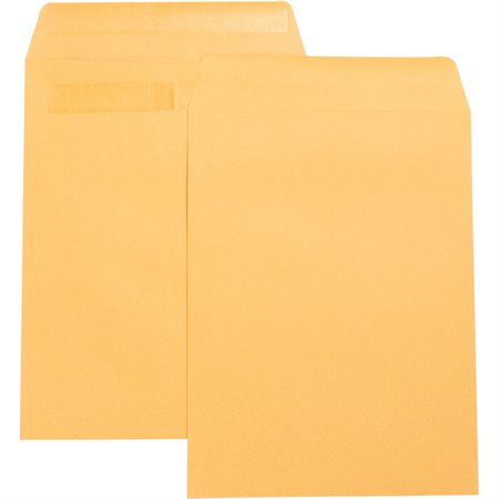 Press-to-Seal Envelope