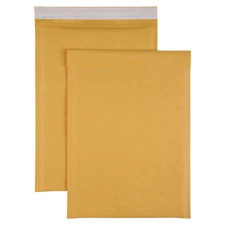 Cushioned Shipping Envelope