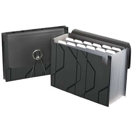 Pocket Expandable File