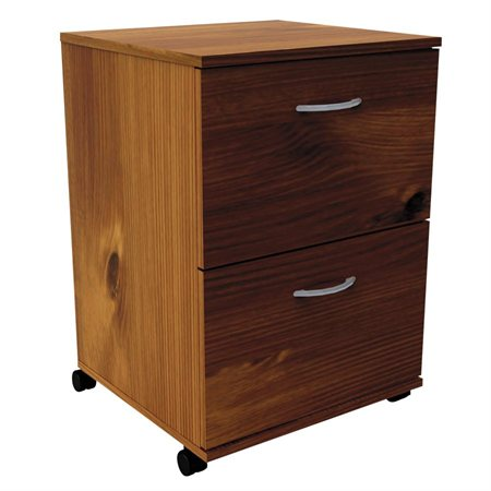 2-Drawer Mobile File