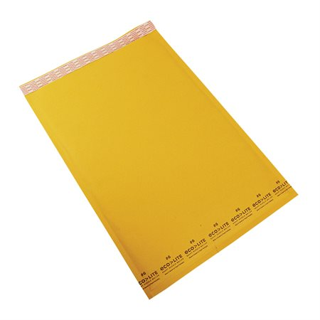 Ecolite Shipping Envelope