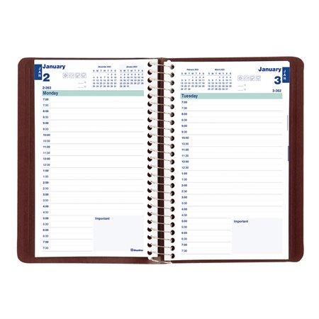 Daily Diary (2021)