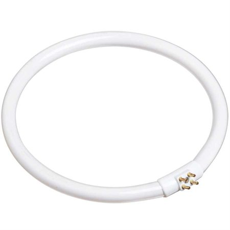 Tube circulaire fluorescent (22 W)