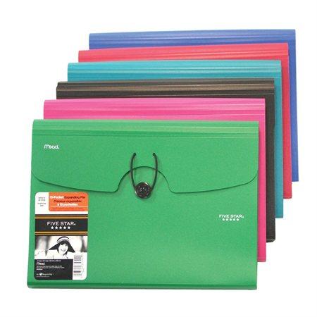 Five Star® 13-Pocket Expanding File