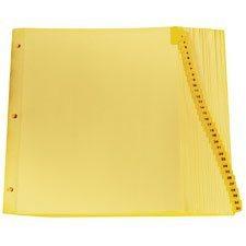 Intercalaires imprimés Lettre 1-31