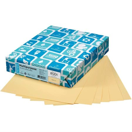 """Papier de couleur à usages multiples EarthChoice® Format lettre - 8-1 / 2 x 11"""" chamois"""