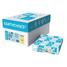"""Papier couverture à usage multiples EarthChoice® Bristol Format lettre, 8-1/2 x 11"""" vergé d'or"""