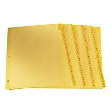 Intercalaires imprimés Lettre 1-100