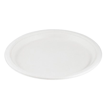 Assiettes Eco Guardian 10""