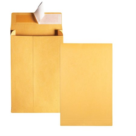 Enveloppe kraft expansible Redi-Strip™ 9 x 12 po.