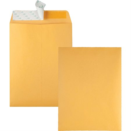 Kraft Catalogue Envelope