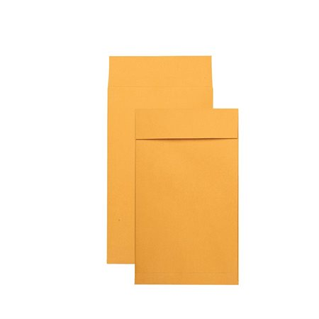 Enveloppe Kraft expansible Redi-Strip™ 10 x 15 po.