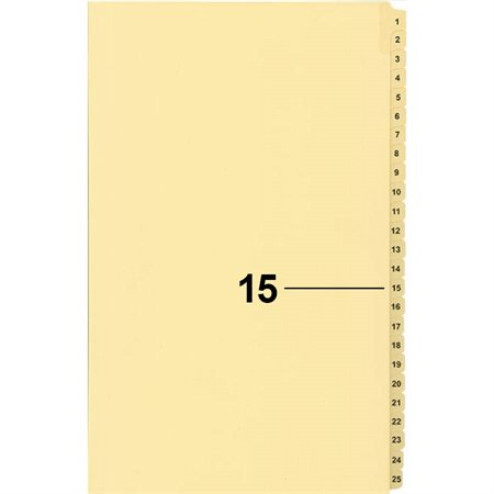 Offix® Numerical Litigation Index Dividers