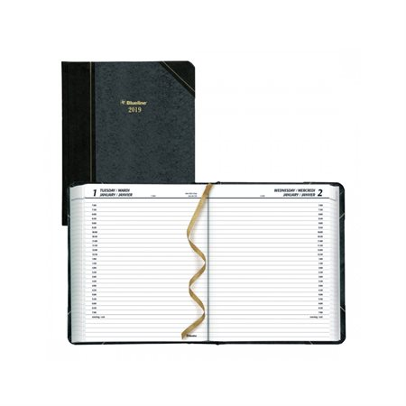 Daily Planner (2020)