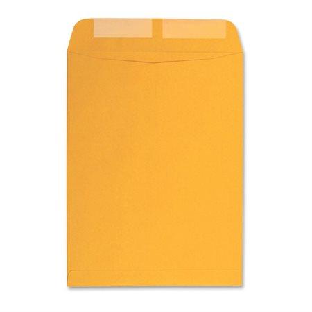 Enveloppe kraft Boîte de 500 #1 6-1 / 2 x 9-1 / 2 po