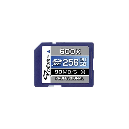 Carte mémoire Secure Digital SDXC 256 Go