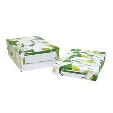 Papier laser glacé Futura® Paquet de 250. 80 lb, couverture. 11 x 17 po