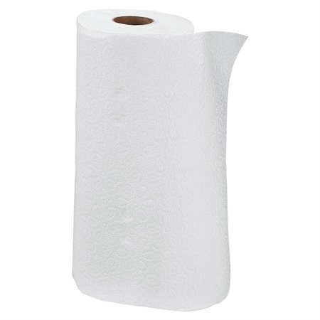 Professional Paper Towels