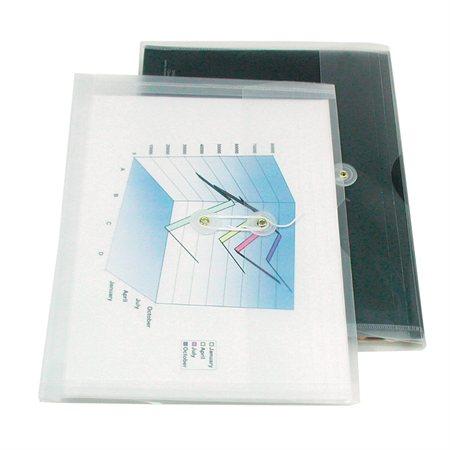 Translucent Expandable Envelope