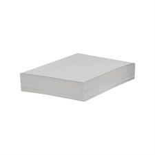 """Papier couverture à usage multiples EarthChoice® Bristol Format lettre, 8-1/2 x 11"""" blanc"""