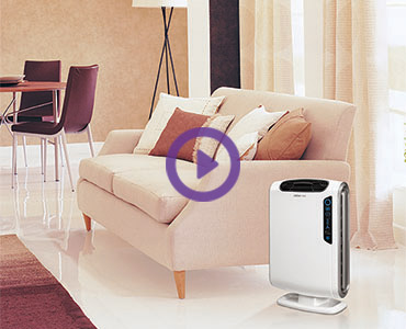 AeraMax-Air-Purifier